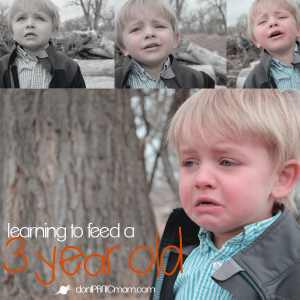 learning-to-feed-a-three-year-old