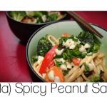 sorta-spicy-peanut-sauce
