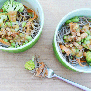 Spicy-Peanut-Soba-Noodles-Wed